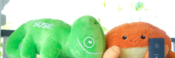 2021-09-06  openSUSE 在谷歌编程之夏的成果